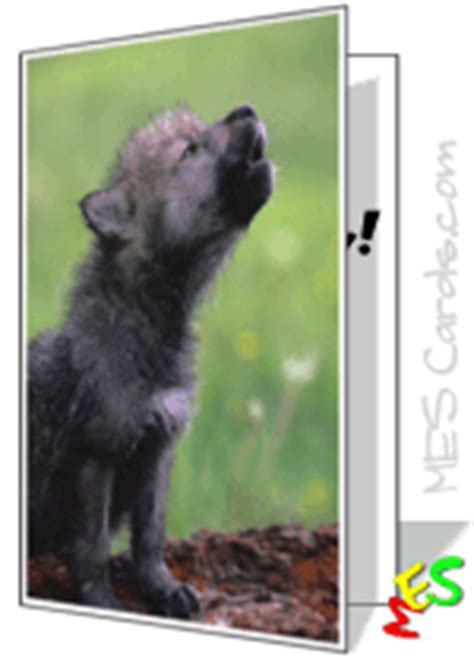 Free online card maker - lone wolf in winter - make your