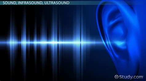 Infrasound: Definition, Effects & Uses - Video & Lesson