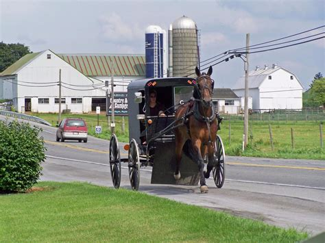 The Good News Today – The Amish Don't Get Autism but They